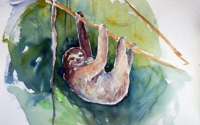 Spiritual Meaning of Sloth (Sloth Totem/Sloth Spirit Animal Meaning)