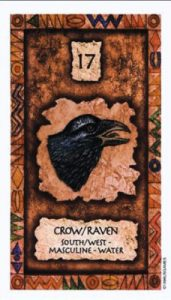 Image of Raven card from the Shaman Wisdom deck