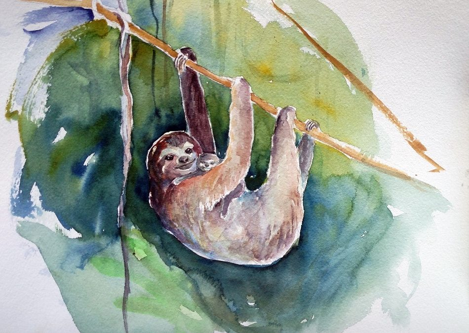 Watercolor painting of sloth and baby by Ona Christie